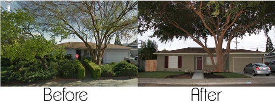 Front yard before/after
