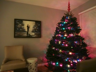 Our first Christmas tree in our home!