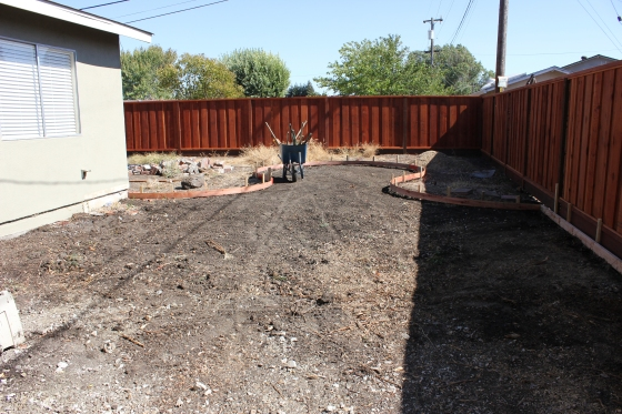 Backyard August 21 2014