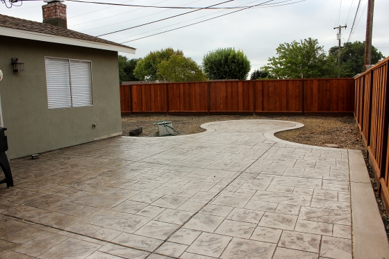 Backyard as of Sept 22